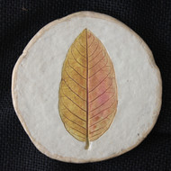 guava leaf tea coaster Artifact By Aranya Earthcraft