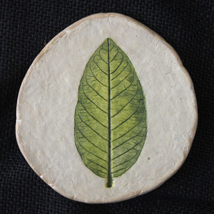 guava leaf tea coaster Artifact By Aranya Earthcraft