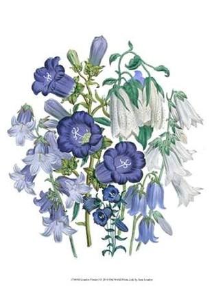 Loudon Florals I Digital Print by Loudon, Jane,Decorative