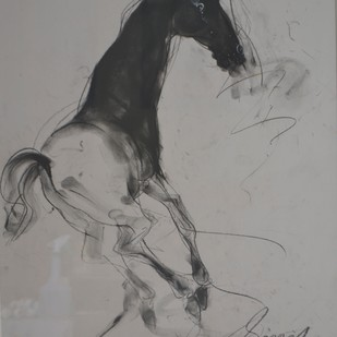 Horse series by Sunil Das, Illustration Painting, Charcoal on Paper, Gray color
