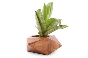 Facet Squat Planter Garden Decor By Objectry