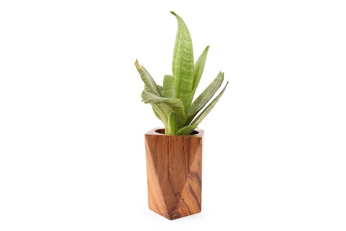 https://www.mojarto.com/objet-d-art/objectry-30927/facet-tall-planter-236597