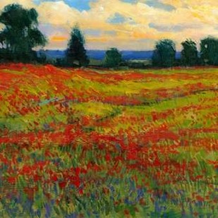 Red Field I Digital Print by OToole, Tim,Impressionism