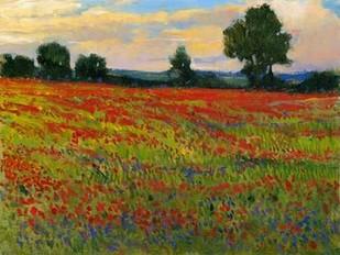 Red Field II Digital Print by OToole, Tim,Impressionism
