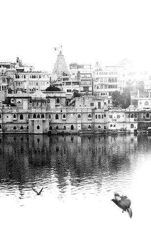 Morning Flights by Rashmi Rai, Image Photography, Digital Print on Archival Paper, Gray color