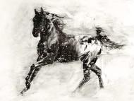 Rustic Appaloosa II Digital Print by Harper, Ethan,Illustration