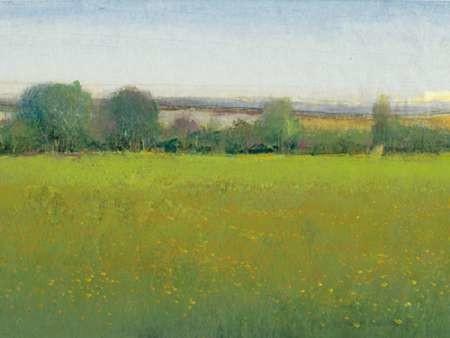 Verdant Countryside II Digital Print by Otoole, Tim,Impressionism