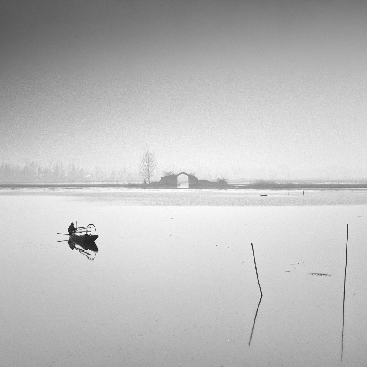 Dal lake,kashmir by Jayanta Roy, Image Photography, Digital Print on Archival Paper, Gray color
