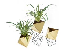 Octahedron Brass Planters - Set of 3 Decorative Vase By Deniable Studio