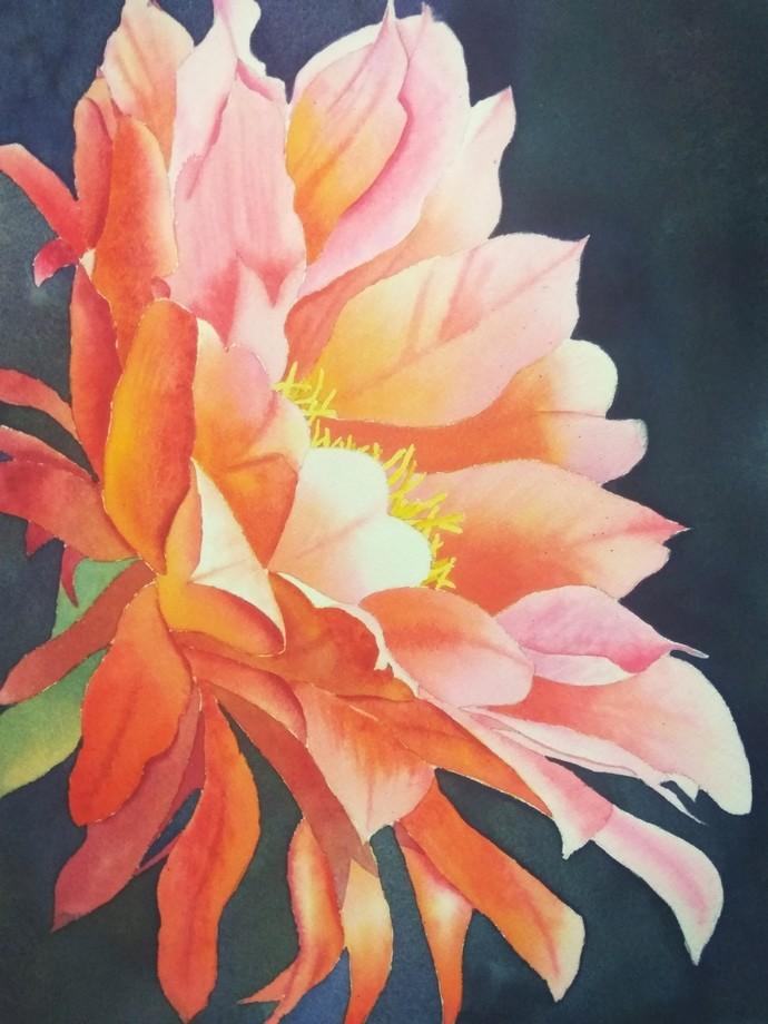 Cactus Bloom Digital Print by Poulami Basu,Impressionism