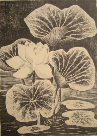 Lotus by Subhamita Sarkar, Impressionism Printmaking, Lithography on Paper, Brown color