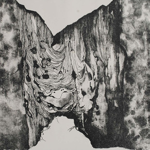 Conquest by Mansi Trivedi, Abstract Printmaking, Lithography on Paper, Gray color
