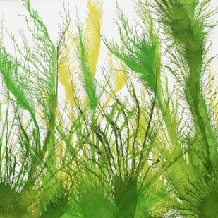 Exploflora Series No. 25 by Sumit Mehndiratta, Impressionism Painting, Acrylic on Canvas, Green color