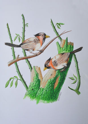 Birds painting (1) by santosh patil, Impressionism Painting, Watercolor on Paper, Pink color