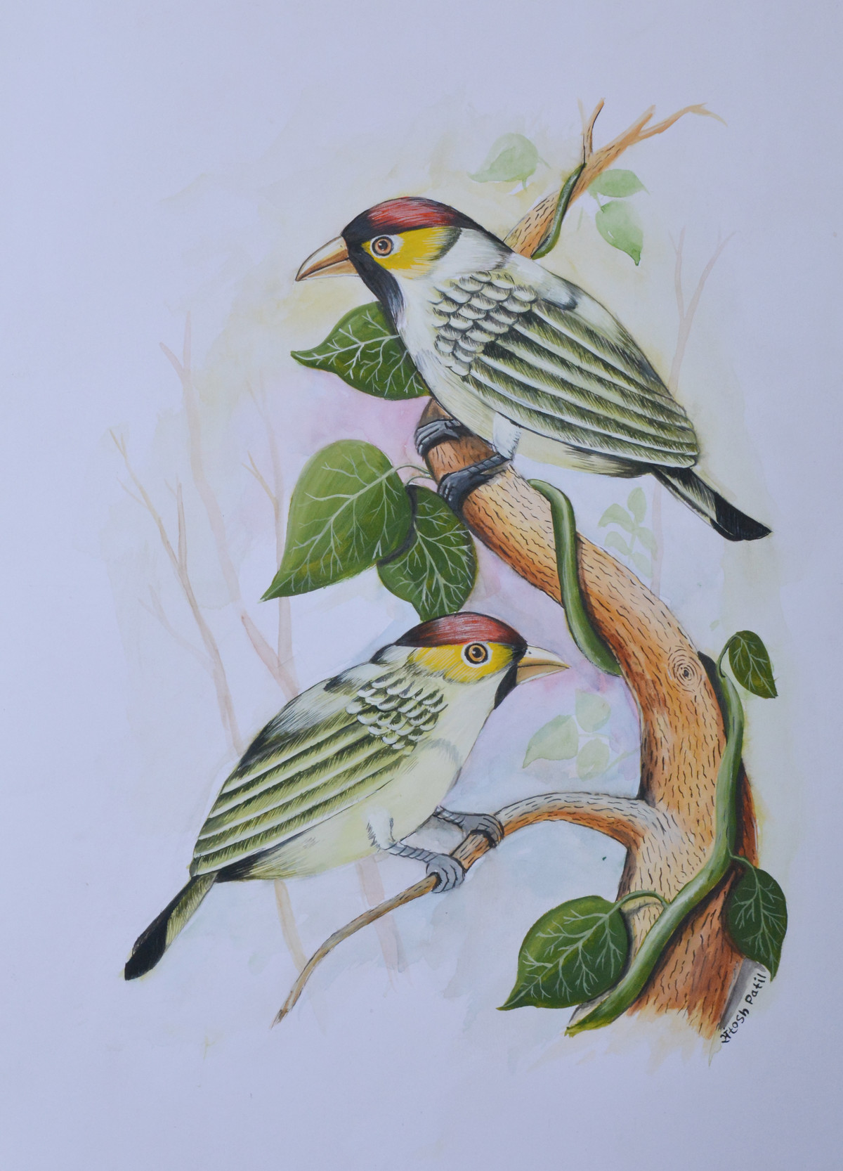 Birds painting (3) by santosh patil, Impressionism Painting, Watercolor on Paper, Pink color