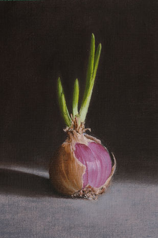 onion by Kiran Kumari B, Realism Painting, Oil on Paper, Gray color