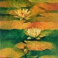 Waterlilies   5