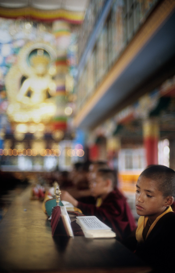 Teachings of The Buddha by Ayush Ranka, Image Photography, Digital Print on Paper, Brown color