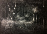 Dark and Deep by Pradip Kate, Impressionism Drawing, Charcoal on Paper, Gray color