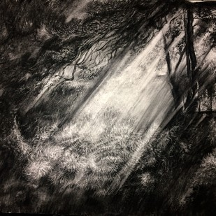 Spotlight 1 by Pradip Kate, Illustration Drawing, Charcoal on Paper, Gray color