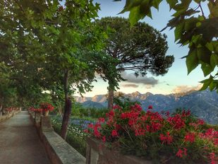Ravello I by Pranay Baidya, Image Photography, Digital Print on Paper, Green color