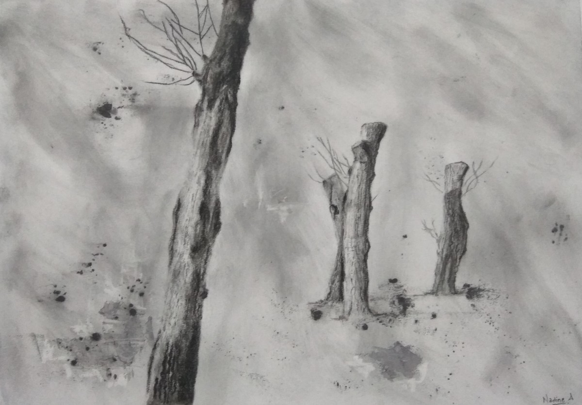 'Wildertrees' by Nadine D'Souza, Illustration Drawing, Charcoal on Paper, Gray color