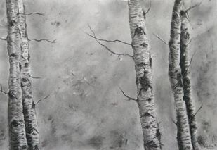 'Wildertrees 2' by Nadine D'Souza, Illustration Drawing, Charcoal on Paper, Gray color