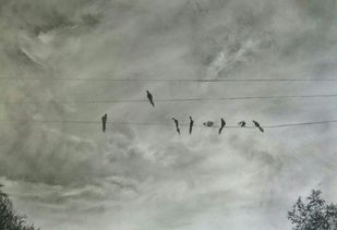 'Birds on the wire' by Nadine D'Souza, Impressionism Drawing, Charcoal on Paper, Gray color
