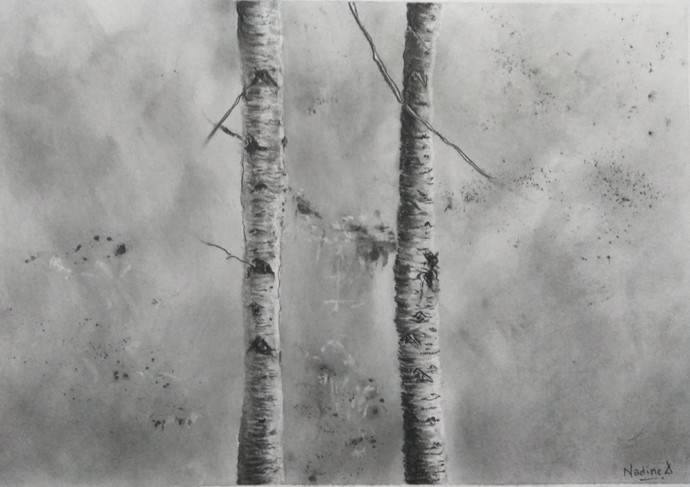 'Wildertrees 3' by Nadine D'Souza, Illustration Drawing, Charcoal on Paper, Gray color