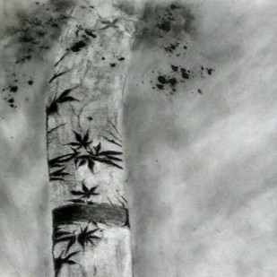 'Shadows on tree' by Nadine D'Souza, Illustration Drawing, Charcoal on Paper, Gray color