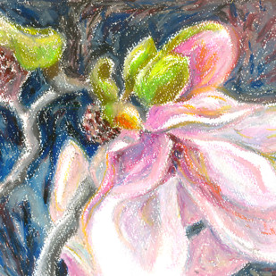 Magnolia series 2 by Shalini Sinha, Expressionism Painting, Oil Pastel on Paper, Pink color