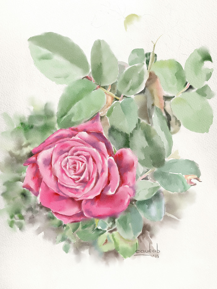 Rose1 by kaukab Ahmad, Impressionism Painting, Watercolor on Paper, Beige color