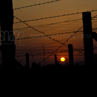 Sunset by Shari, Image Photography, Digital Print on Archival Paper, Black color