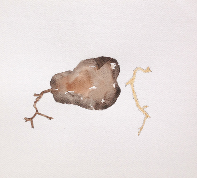 untitled 1494 by Arvind Patel, Minimalism Drawing, Watercolor on Paper, Gray color