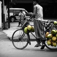 Coconutbiker