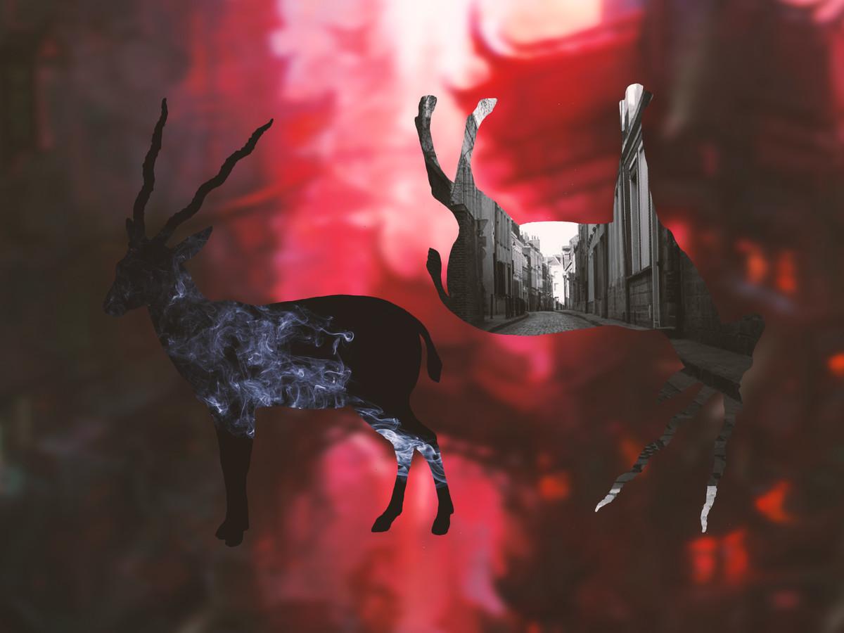 In Smoke by Kiran Bhote, Digital Digital Art, Digital Print on Paper, Brown color