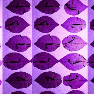 Bouganvilla Matrix by Shafi, Image Photography, Digital Print on Paper, Purple color