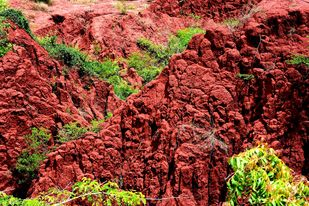 Martian Landing by Shafi, Image Photography, Digital Print on Paper, Brown color