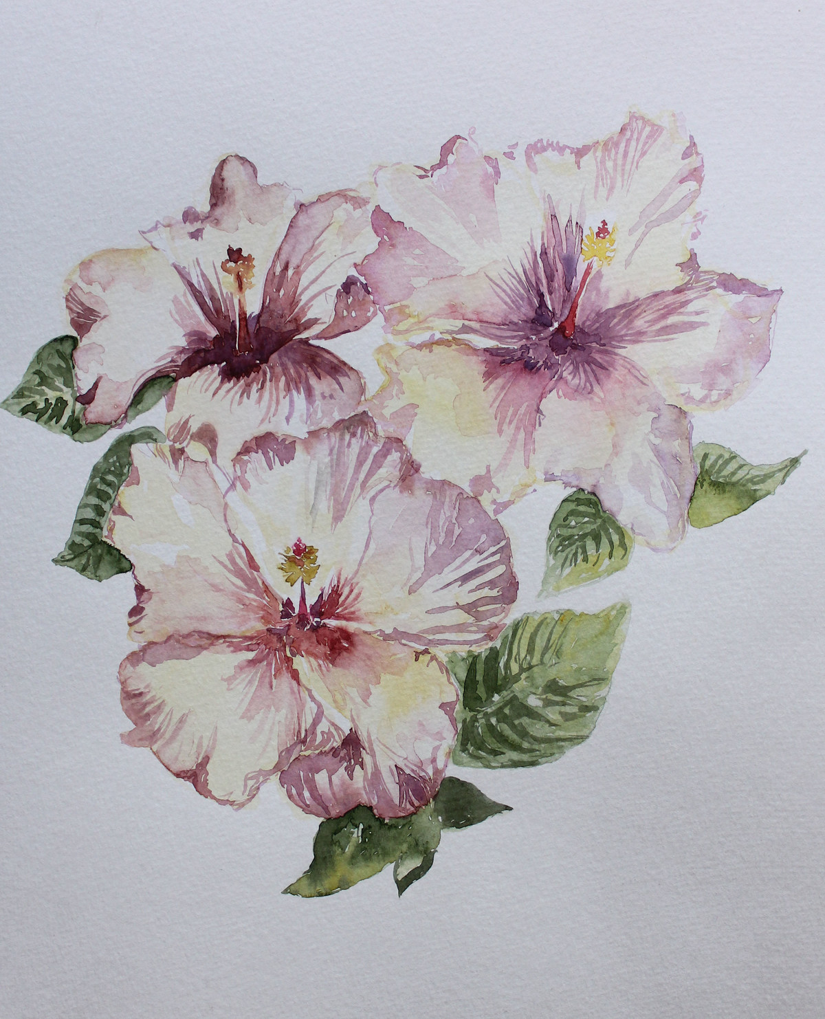 Hibiscuss in bloom by Rudrakshi , Impressionism Painting, Watercolor on Paper, Gray color