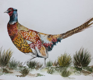 Pheasant by Rudrakshi , Impressionism Painting, Watercolor on Paper, Gray color