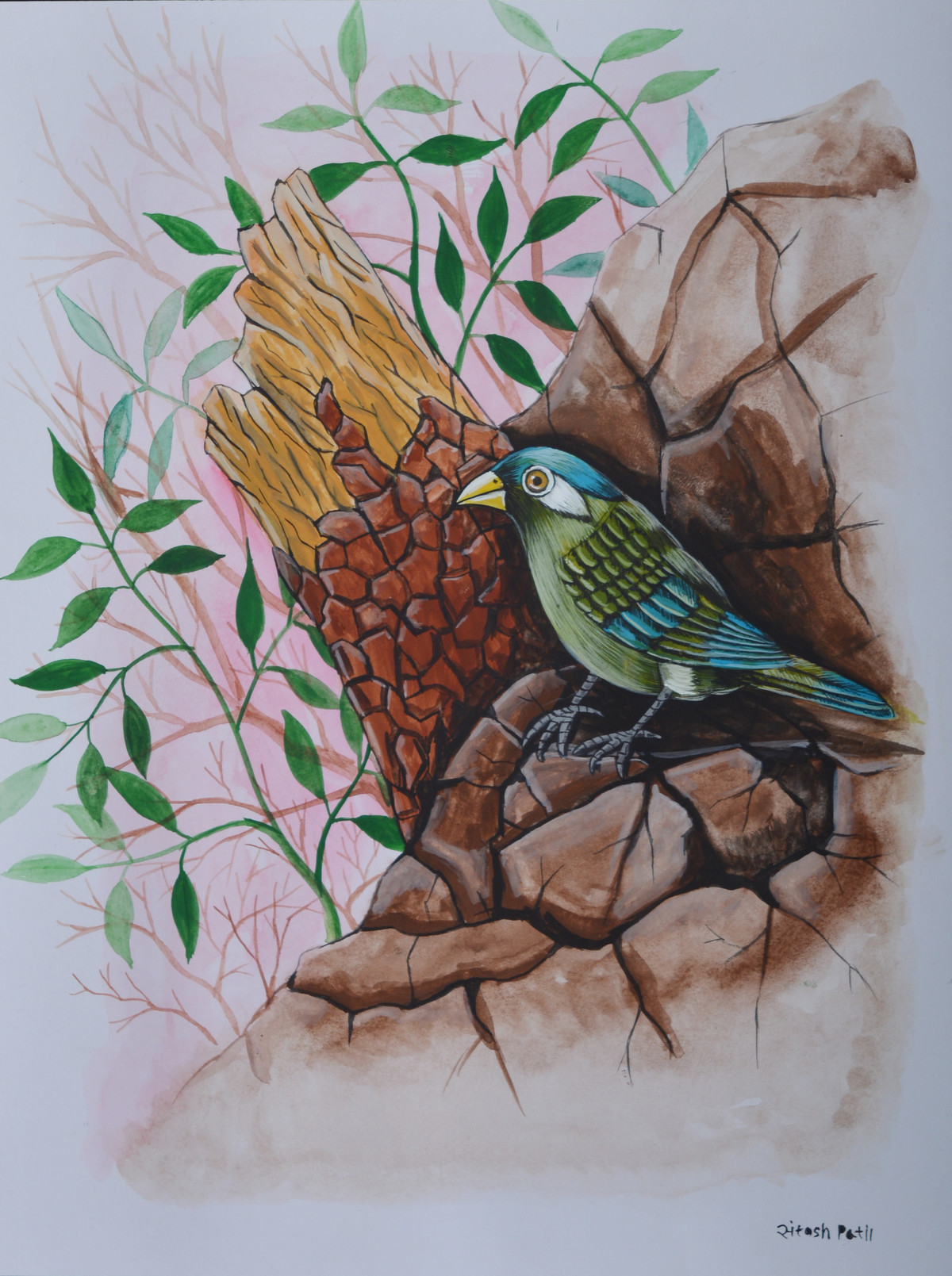 Bird Painting 34 by santosh patil, Decorative Painting, Watercolor on Paper, Brown color