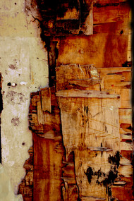 Speaking walls 5 by Sayali, Image Photography, Digital Print on Canvas, Brown color