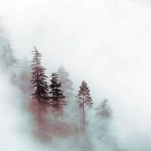The Mist by Ridhiin Pancchmatia, Image Photography, Digital Print on Enhanced Matt, Gray color