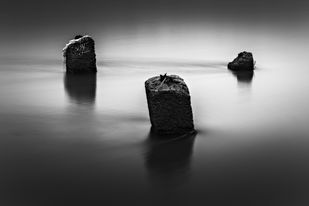 Trio by Minhajul Haque, Image Photography, Inkjet Print on Archival Paper, Gray color