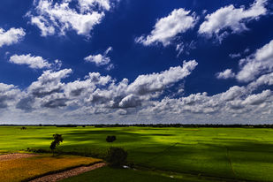 Cloudy Farmland by Minhajul Haque, Image Photography, Inkjet Print on Archival Paper, Blue color