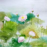 Lotus pond2