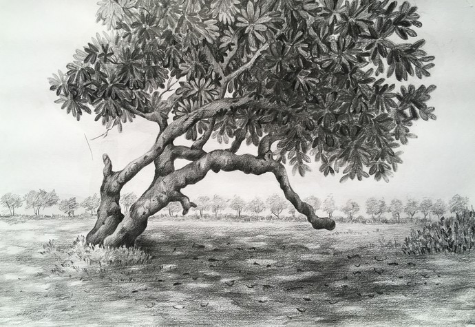 Untitled 8 by SOUMI JANA, Illustration Drawing, Pencil on Paper, Gray color