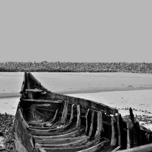 Back from the Ocean by M. Shafiq, Image Photography, Digital Print on Archival Paper, Gray color