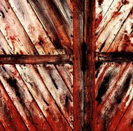 Shades of Red by M. Shafiq, Expressionism Photography, Digital Print on Archival Paper, Brown color