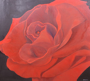 Red Rose by Ananjay Sharma, Expressionism Painting, Oil on Canvas, Red color